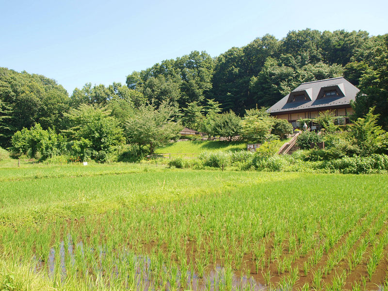 yatoyamanoie