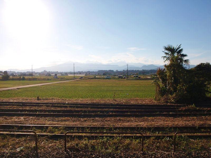 ホームからの眺め。田んぼと大山が一望できる
