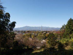 伝説の丘から見た大山