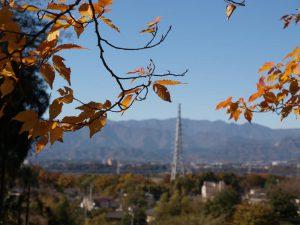 黄葉と大山