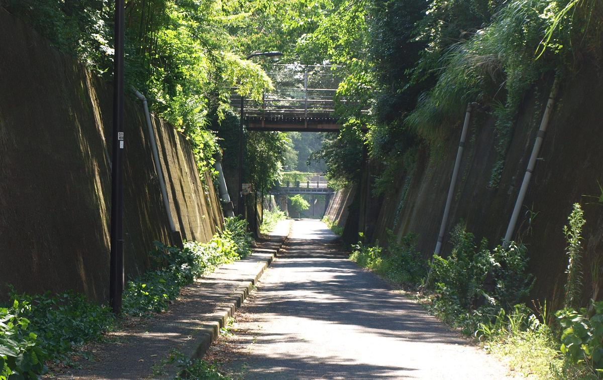 米軍基地の下のトンネル!?隠れお散歩スポット「新戸隧道」