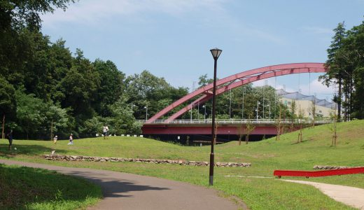 歴史と豊かな自然あふれる総合公園!芹沢公園へ遊びに行こう!